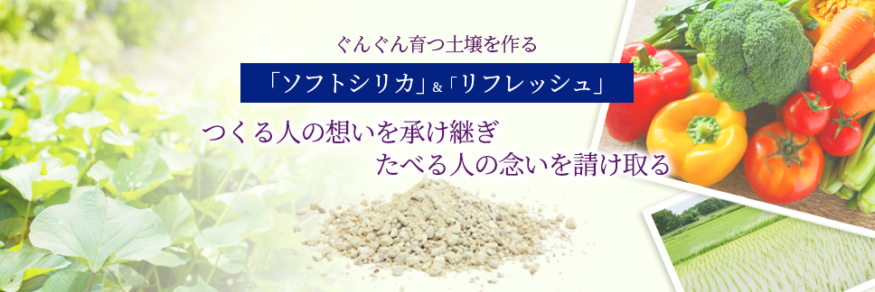 シリカ ソフト ソフトシリカ ソフト・シリカ株式会社